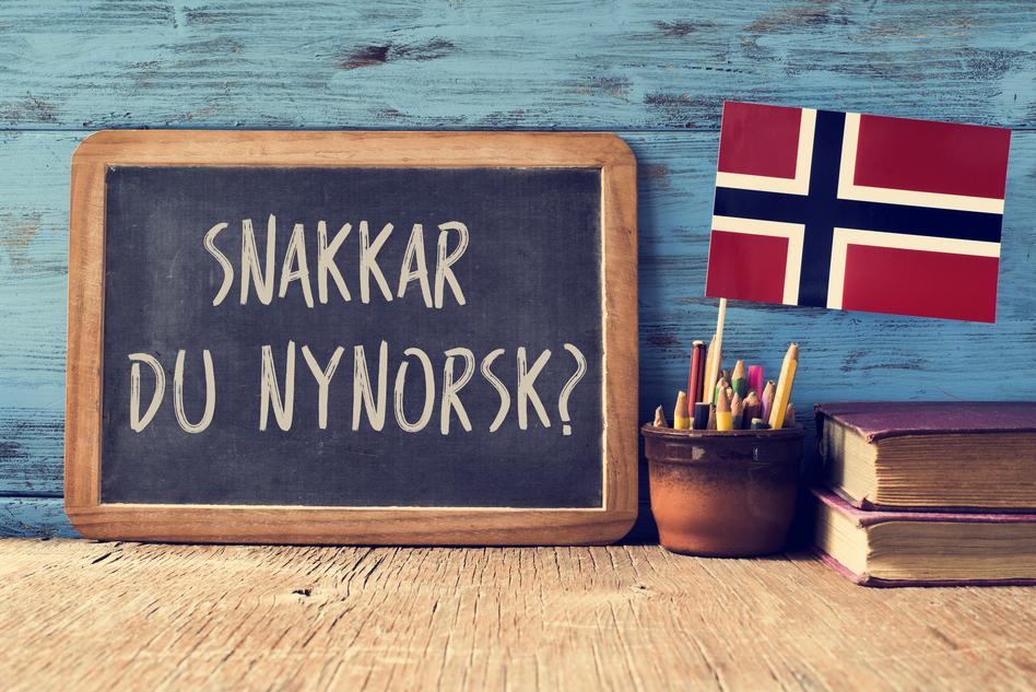 Język norweski w podróży
