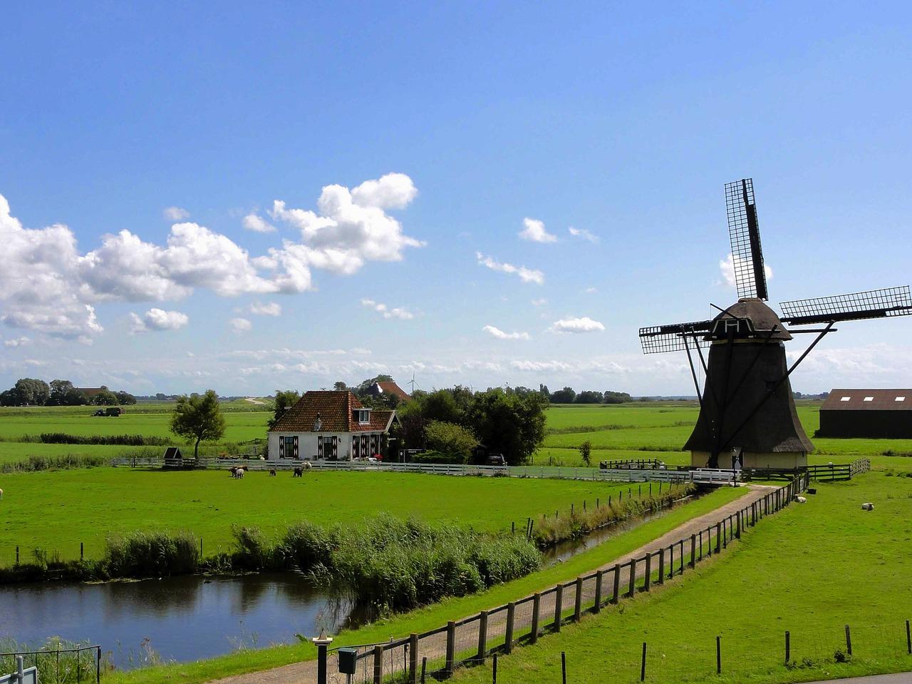 Kuchnia holenderska w Twoim domu
