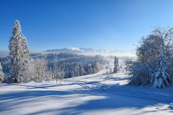 Ferie zimowe w Białce Tatrzańskiej – atrakcje dla dzieci